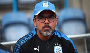 Huddersfield-boss-David-Wagner-838535